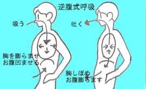 逆腹式呼吸